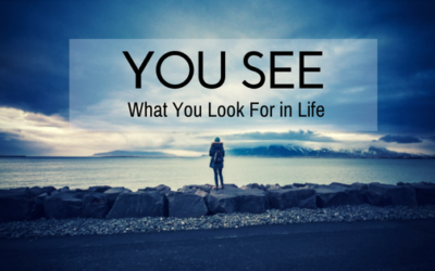 You See What You Look For